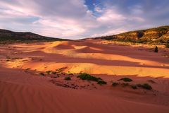 Coral Pink Sand Dunes State Park.  Royalty Free Stock Photos