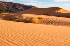 Coral Pink Sand Dunes State Park. In Southern Utah Royalty Free Stock Images