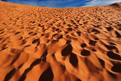 Coral Pink Sand Dunes, Utah Royalty Free Stock Image