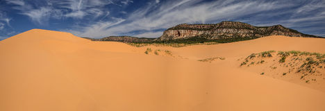 Coral Pink Sand Dunes In Utah Panoram Royalty Free Stock Image
