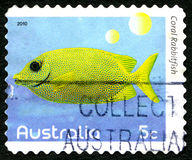 Coral Rabbitfish Australian Postage Stamp foto de stock royalty free