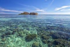 Coral Reef imagem de stock royalty free