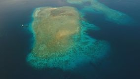 Coral Reef Atoll, Bali fotografie stock