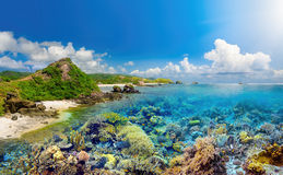 Coral reef on background tropical island Stock Photo