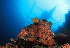 Coral Reef and Bangka Boat Royalty Free Stock Photo