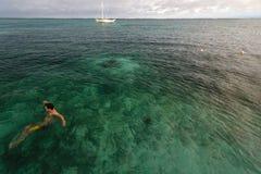 Coral Reef, Belice - 1 de diciembre de 2013: El nadador goza de las aguas tropicales claras calientes del Caribe en un día soleado Foto de archivo libre de regalías