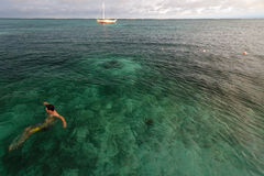 Coral Reef, Belize - December 1, 2013: Swimmer enjoys warm clear tropical waters of the Caribbean on a sunny day Royalty Free Stock Photo