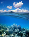 Coral reef with cloudy blue sky horizon split. Underwater coral reef with water surface and cloudy blue sky horizon split by waterline royalty free stock photography