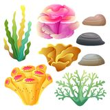 Coral reef collection set. Colorful coral reef collection set, additional file in eps 10 file Stock Image