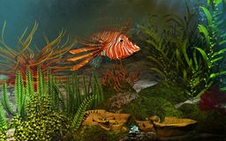Coral reef. With colorful fish Stock Photos