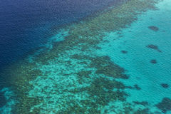 Coral Reef and detail of Atoll Stock Images
