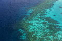 Coral Reef and detail of Atoll Royalty Free Stock Image