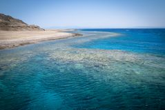 Coral reef and dive site in Red sea Stock Images