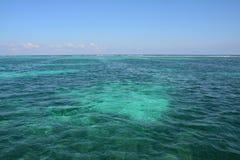 Coral Reef en la isla Belice del calafate de Caye imagen de archivo