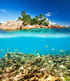 Coral reef and fish at Seychelles Stock Photos