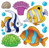 Coral reef fish theme collection 3 Royalty Free Stock Photography