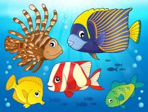 Coral reef fish theme image 3 Stock Photos