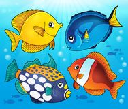 Coral reef fish theme image 5 Royalty Free Stock Photos