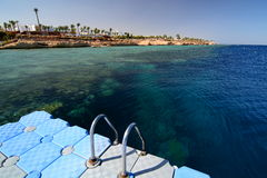 The coral reef from a floating pier. Sharm El Sheikh. Red Sea. Egypt Stock Image