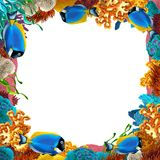 The coral reef - frame - border - illustration for the children Stock Photos