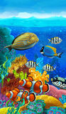 The coral reef - illustration for the children Royalty Free Stock Photos