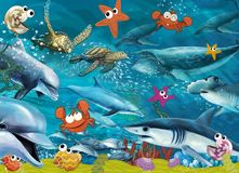 The coral reef - illustration for the children Stock Photography