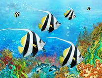 The coral reef - illustration for the children Royalty Free Stock Photo
