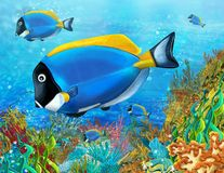 The coral reef - illustration for the children Stock Image