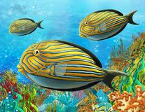 The coral reef - illustration for the children Stock Images