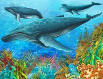The coral reef - illustration for the children Royalty Free Stock Image