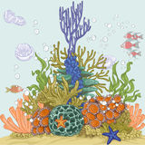 Coral reef illustration Stock Photography