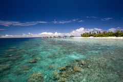 Coral reef and island Stock Photos