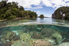 Coral Reef and Islands in Raja Ampat royalty free stock image