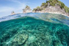 Coral Reef and Limestone Island Royalty Free Stock Image