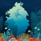 Coral reef and manta. Underwater vector. Stock Images