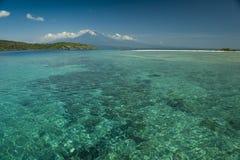 Coral Reef Menjangan ö Royaltyfri Foto