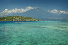 Coral Reef, Menjangan Island Royalty Free Stock Photography