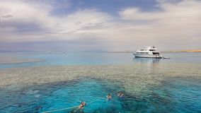 Coral reef near Tiran, Egypt Stock Photography