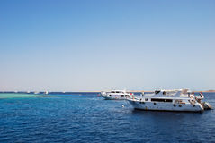 Coral reef near Tiran, Egypt. Coral reef near Tiran and white boats Stock Photography