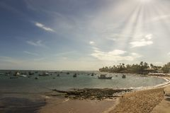 Coral reef in Praia do forte, Bahia, Brazil at sunset. Coral reef in Praia do forte, Bahia, Brazil at sunset royalty free stock image