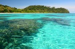 Coral Reef Rok de KOH thailand images libres de droits