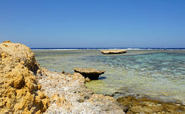 Coral reef. Scenic landspace in el quesir in egypt Royalty Free Stock Images