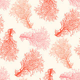 Coral reef seamless pattern Stock Image