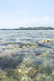 Coral Reef. Shallow coral reef at Mabul Island, sabah, Malaysia Royalty Free Stock Photo