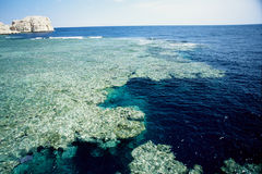 Coral reef sharm el sheik Stock Photography
