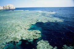 Coral reef sharm el sheik Stock Photography