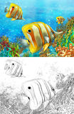 The coral reef - small colorful coral fishes - with coloring page Royalty Free Stock Photography