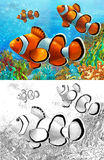 The coral reef - small colorful coral fishes - with coloring page Stock Photo