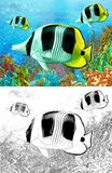 The coral reef - small colorful coral fishes - with coloring page Stock Image
