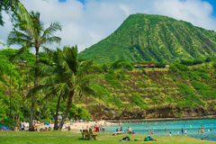 Coral reef snorkeling resort on Hawaii Royalty Free Stock Images